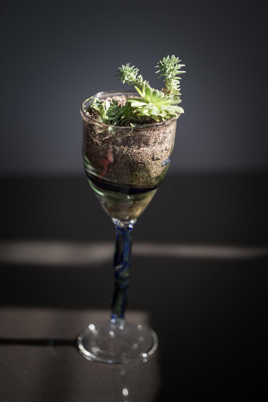 Piezas exclusivas de vidrio soplado, unicas e irrepetibles.